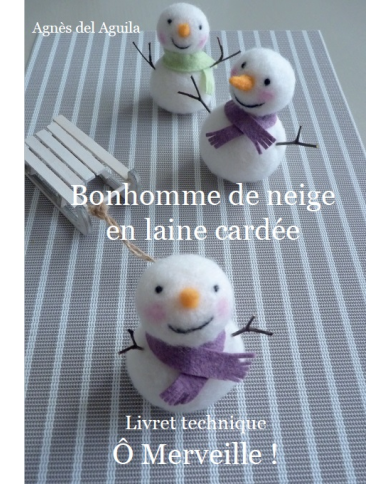 Sneeuwpop boekje