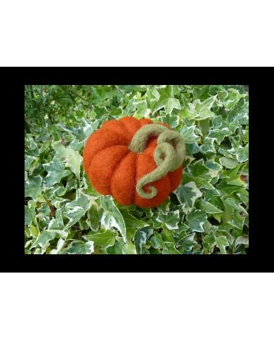 kit citrouille feutrée en laine cardée Ô Merveille