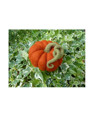 Ô Merveille felted pumpkin kit in carded wool