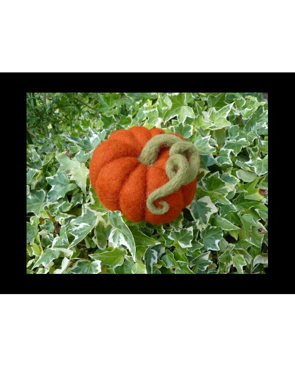 Ô Merveille vilten pompoenset van gekaarde wol
