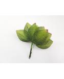 12 groene decoratieve bladeren model 5